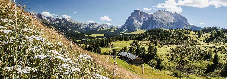 Urlaubsregionen In Den Dolomiten Die Schonsten Reiseziele