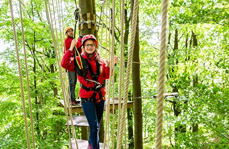 Edelweiss Klettergurt Wikipedia : Adventure park kolfuschg gadertal vivodolomiten